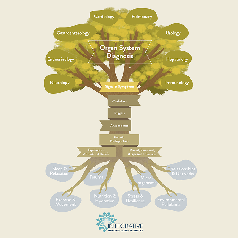 Functional Medicine Tree IMLA